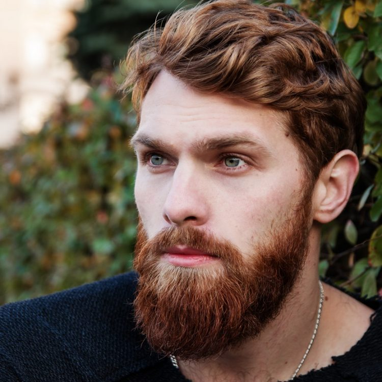 adult-attractive-beard-247885